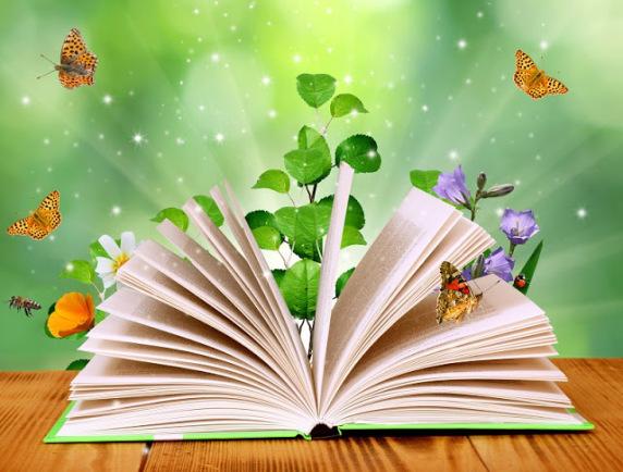 Această imagine are atributul alt gol; numele fișierului este livre-jardin-papillons.jpg