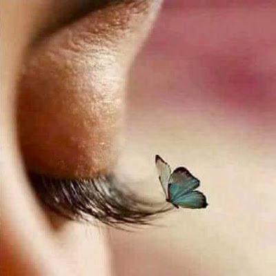 Această imagine are atributul alt gol; numele fișierului este papillon-bleu-sur-cils.jpg